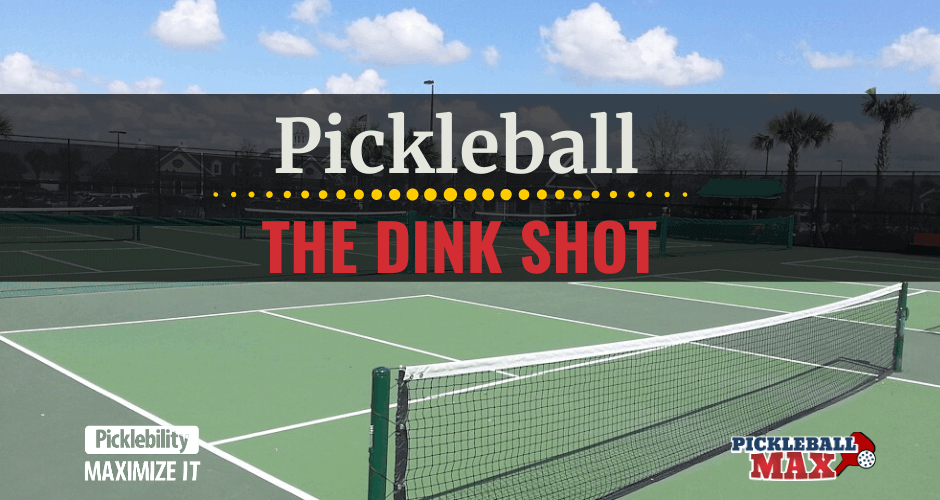 Pickleball Dink Shot