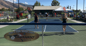 Much to Learn from Facebook Live Videos — Pickleball Tournament of Champions